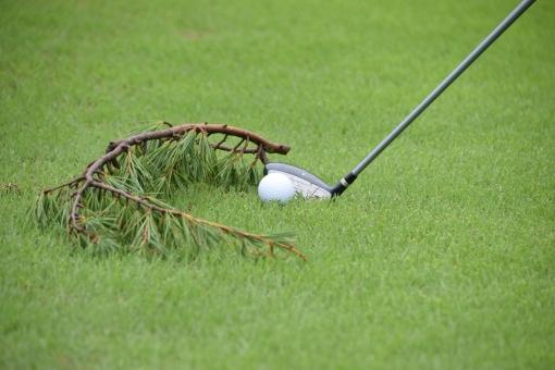 ゴルフ練習場は好条件であることを理解する。